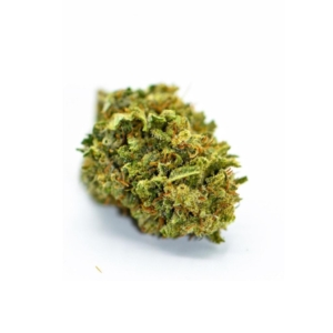 orange bud cbd blüte