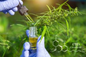 Cannabinoide - was sind das eigentlich?