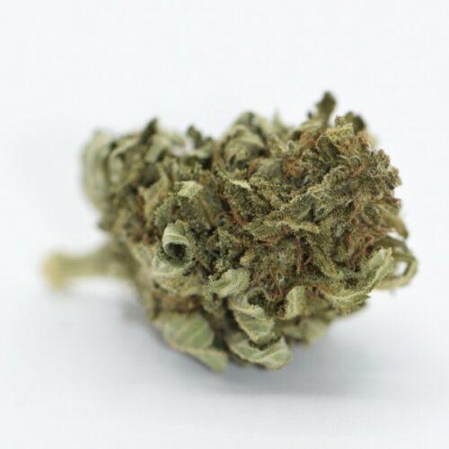 CBD Blüten billig bestellen Puna Haze