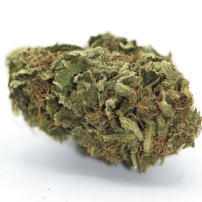 CBD Gras günstig bestellen Orange Bud
