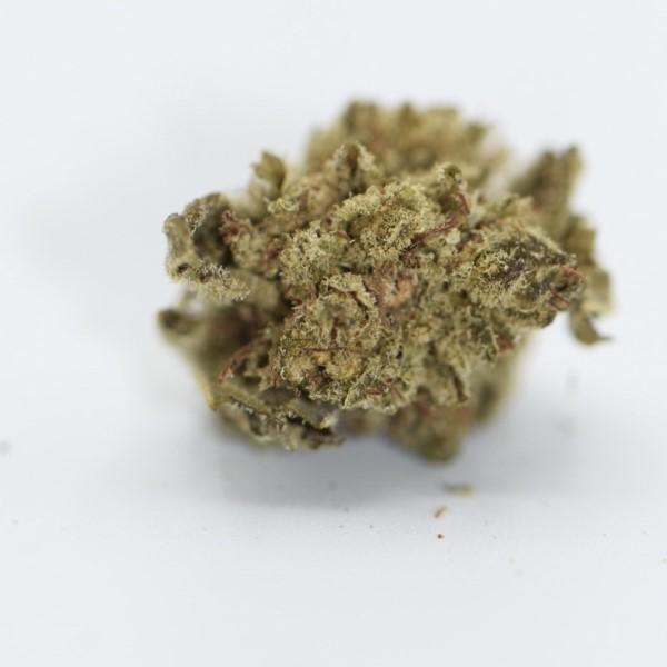 Mexican Sativa CBD-Weed billig kaufen
