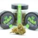 Green Gelato CBD billig kaufen