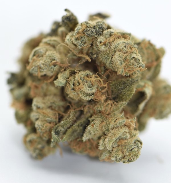 Weed-CBD bestellen Amnesia Haze