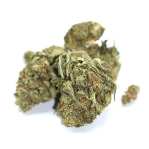 Bio CBD Blüte Amnesia 9% cbg